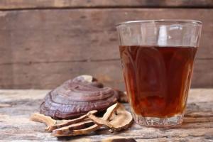 چای گانودرما